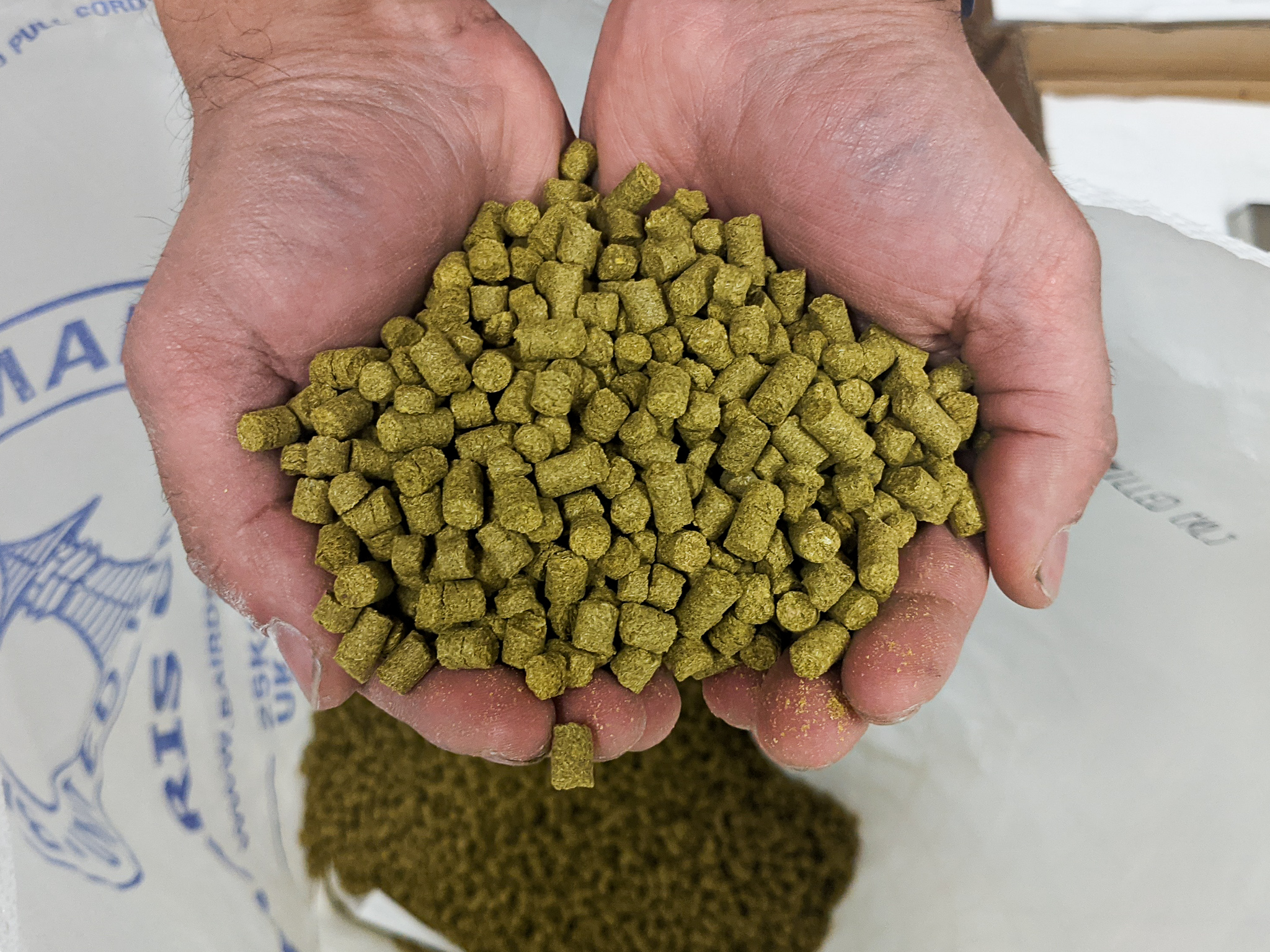 Pale Ale and IPA: What's the difference?